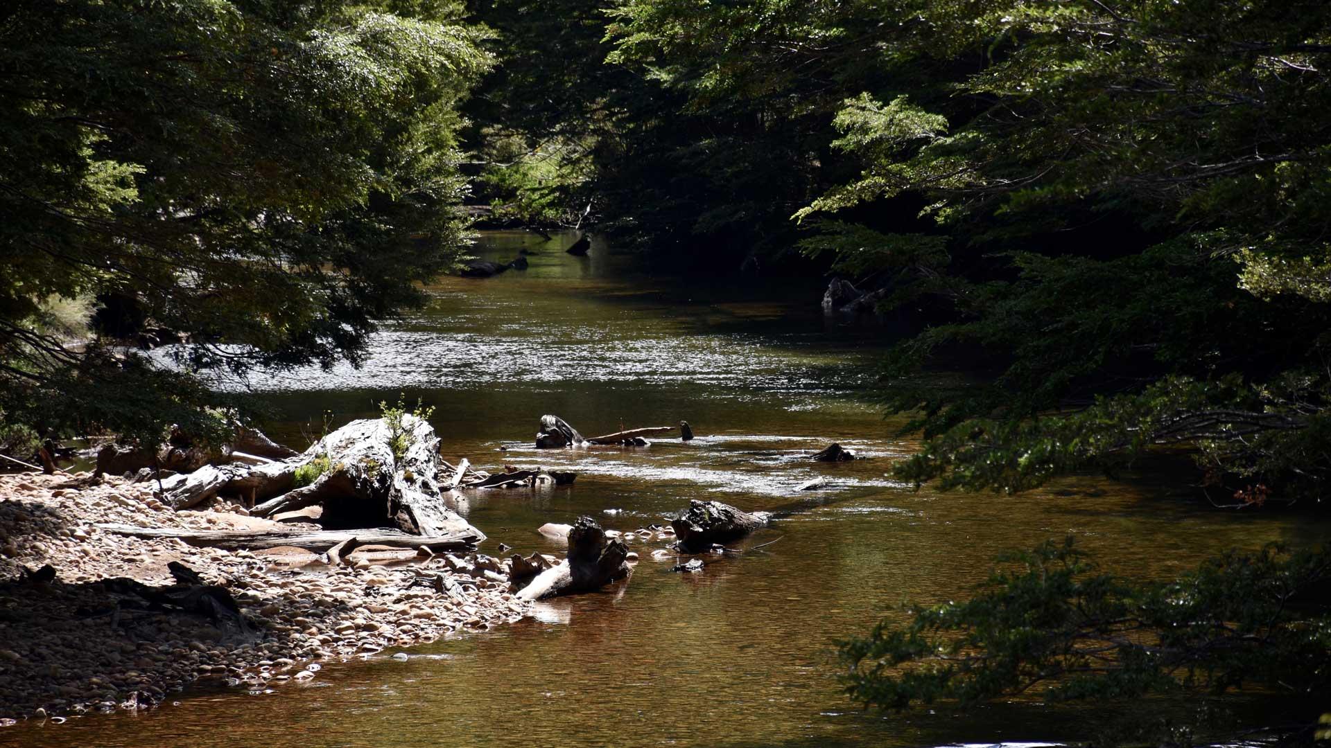 Die glasklaren Abschnitte des Rio Picaflor erfordern Fingerspitzengefühl