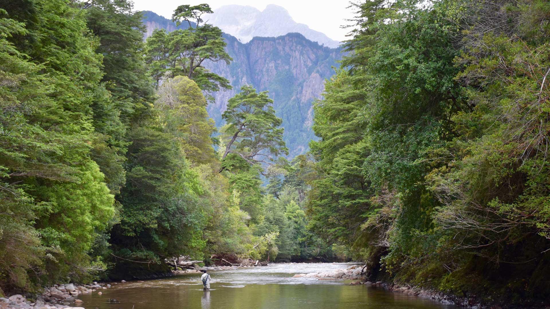 Der Rio Simpson ist ein Paradies für Fliegenfischer
